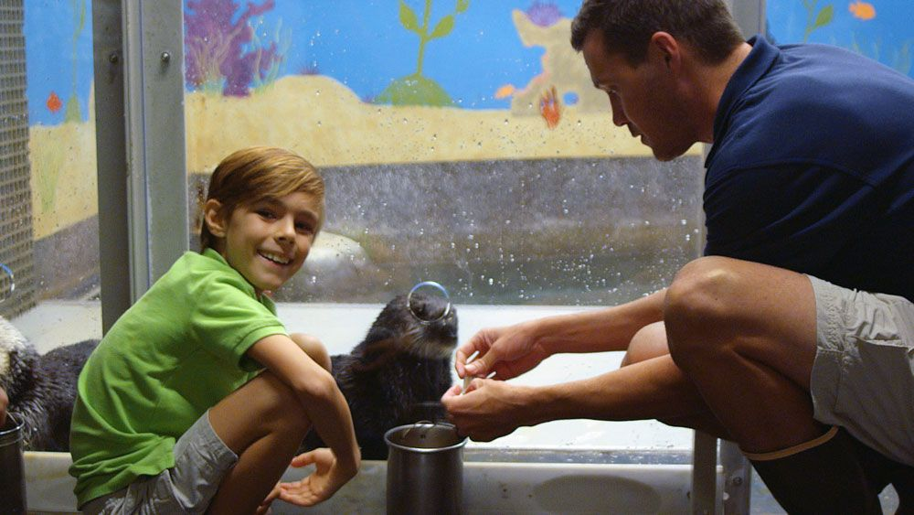 Boy with otter and trainer - lightbox