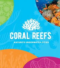 Coral Reefs Exhibit Opens This Summer
