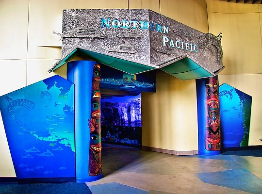 Northern Pacific Gallery entrance - slideshow