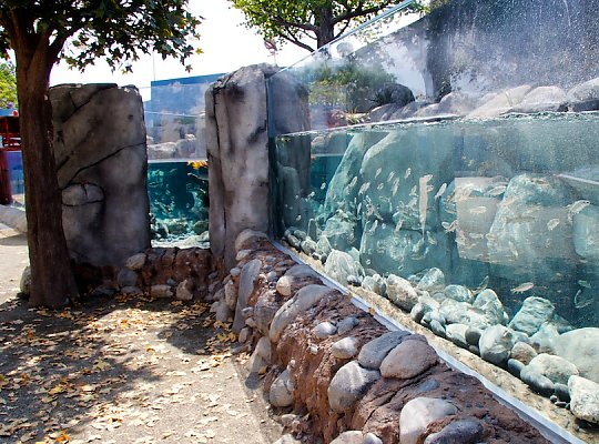Steelhead Exhibit tanks - slideshow