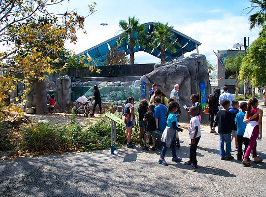 Children in front of Steelhead Exhibit - slideshow