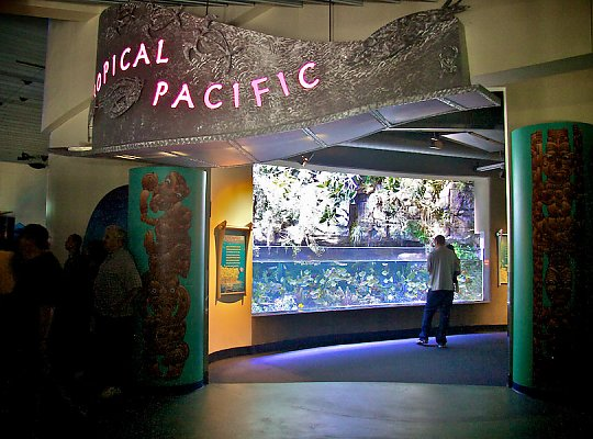 Tropical Pacific Gallery entrance - slideshow