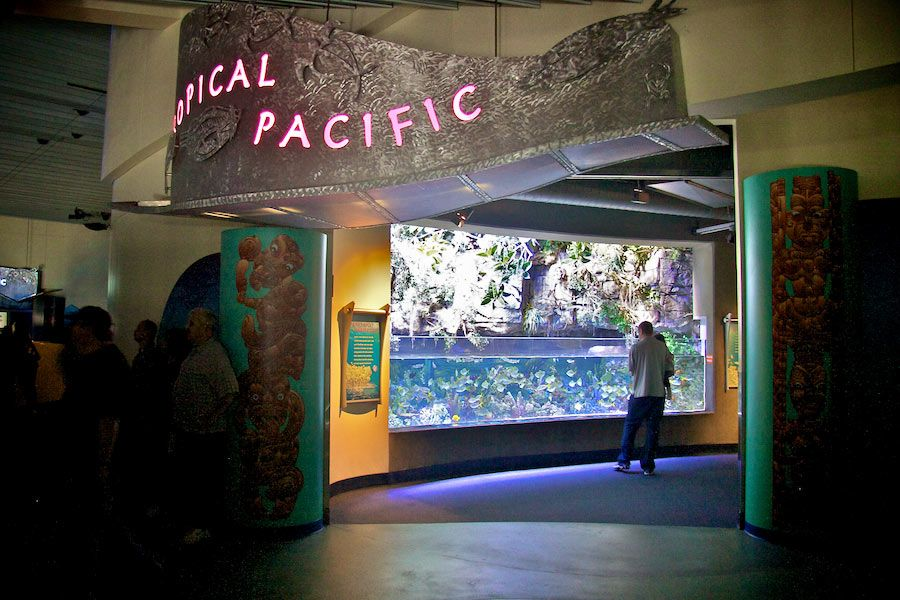 Tropical Pacific Gallery entrance - lightbox