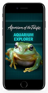 frogs-explorer-app-website.jpg links to Aquarium Explorer App Support Page