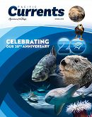 Pacific Currents Spring 2018 Cover links to Pacific Currents Spring 2018