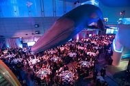 top view of people dining at formal event in great hall of the aquarium