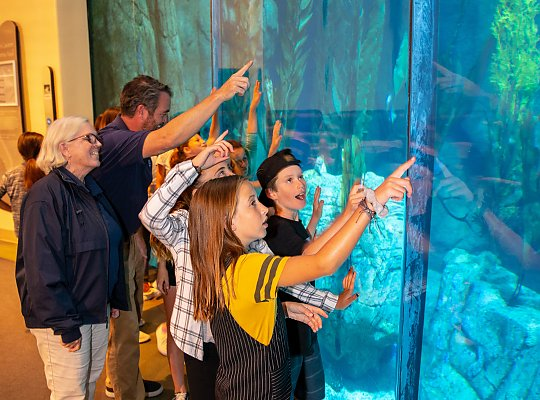 students pointing to blue cavern exhibit - slideshow