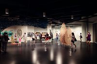 2_Art-Gallery_CourtesyoftheAquariumofthePacific900.jpg - thumbnail