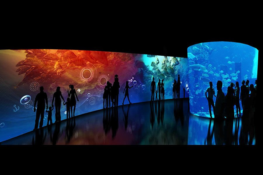 Interactive Changing Exhibit Gallery - lightbox