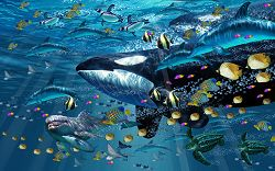 Painting of an orca swimming underwater with tropical fish, sea turtles, dolphins, rays, and penguins
