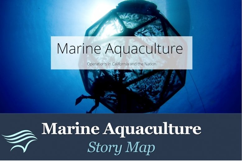 Marine Aquaculture Story Map logo with divers and mesh - slideshow