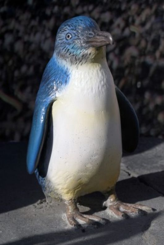 Little Blue (Fairy) Penguin statue at the Aquarium - popup