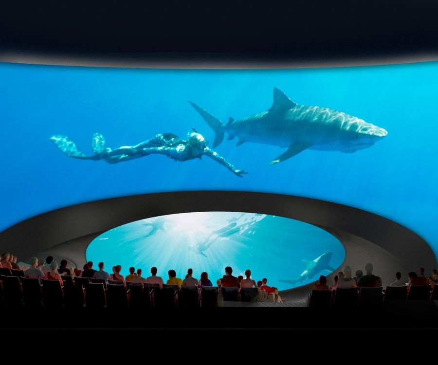 Rendering of theater showing shark and diver - lightbox