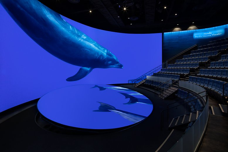 Pacific Visions Theater with Dolphin - slideshow
