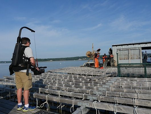 Aquarium camera operator with camera harness on a mussel raft, filming a mussel harvest.