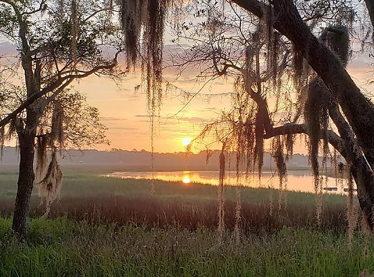 Beautiful sunrise over South Carolina wetland with oaks and Spanish moss in foreground. 900x600 - slideshow