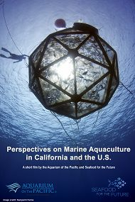 Perspectives Film Cover links to New Film Highlights Importance of Marine Aquaculture