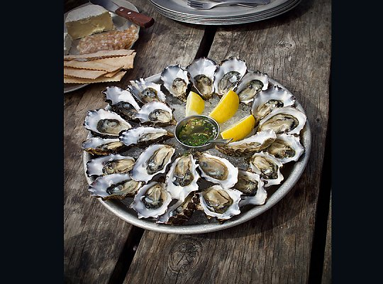 Oysters plated in a circle on a tray with lemons and mignonette sauce. 900x600 gallery - slideshow