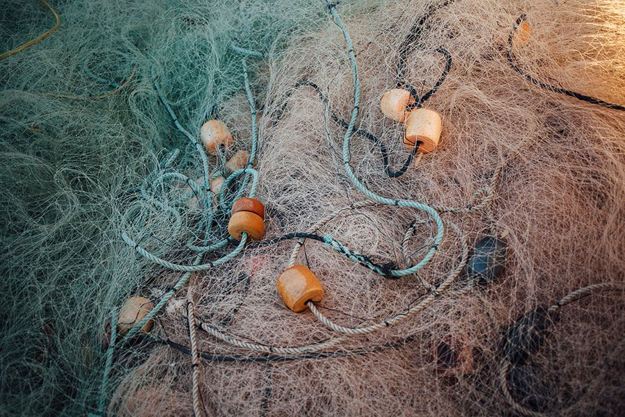 Gillnets - lightbox