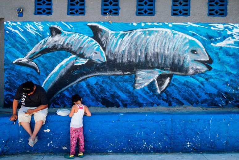 Vaquita mural with people in front