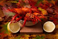 Lobsters served in a bowl with autumn leaves in background