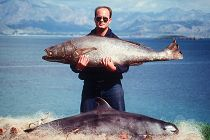Man holding a totoaba fish links to Vaquita and Totoaba