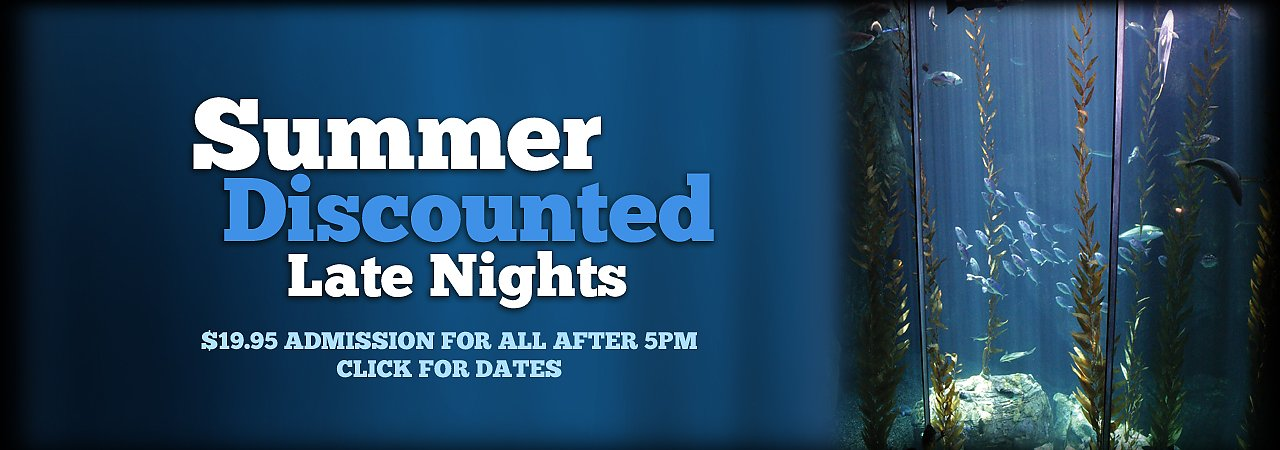 Summer Discounted Late Nights at the Aquarium Click for dates and details - banner