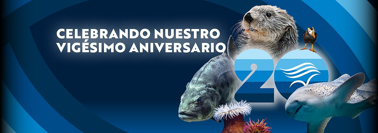 Celebrating the Aquarium's 20th in Spanish - banner