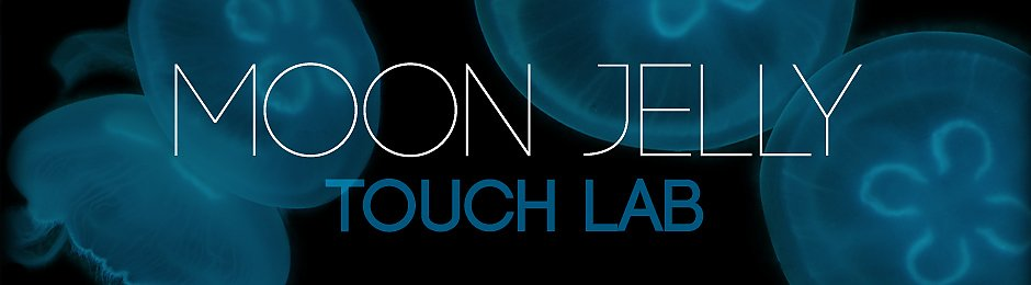 Moon Jelly Touch Lab - banner