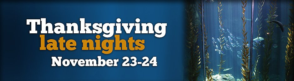 Thanksgiving Late Nights on November 23 and 24