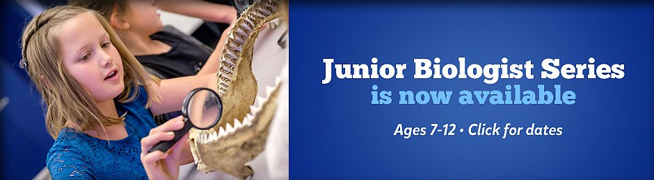Junior Biologist education programs - banner