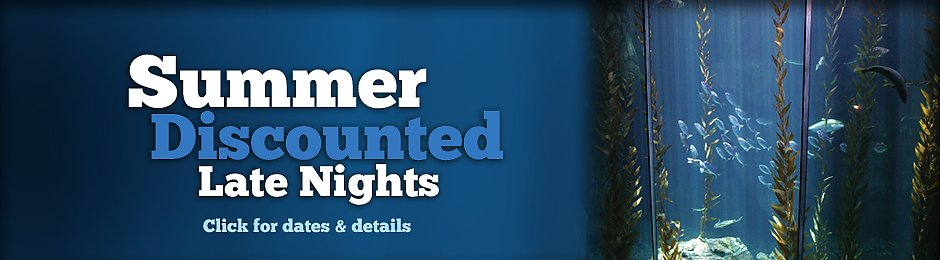 Summer Late Nights at the Aquarium - banner