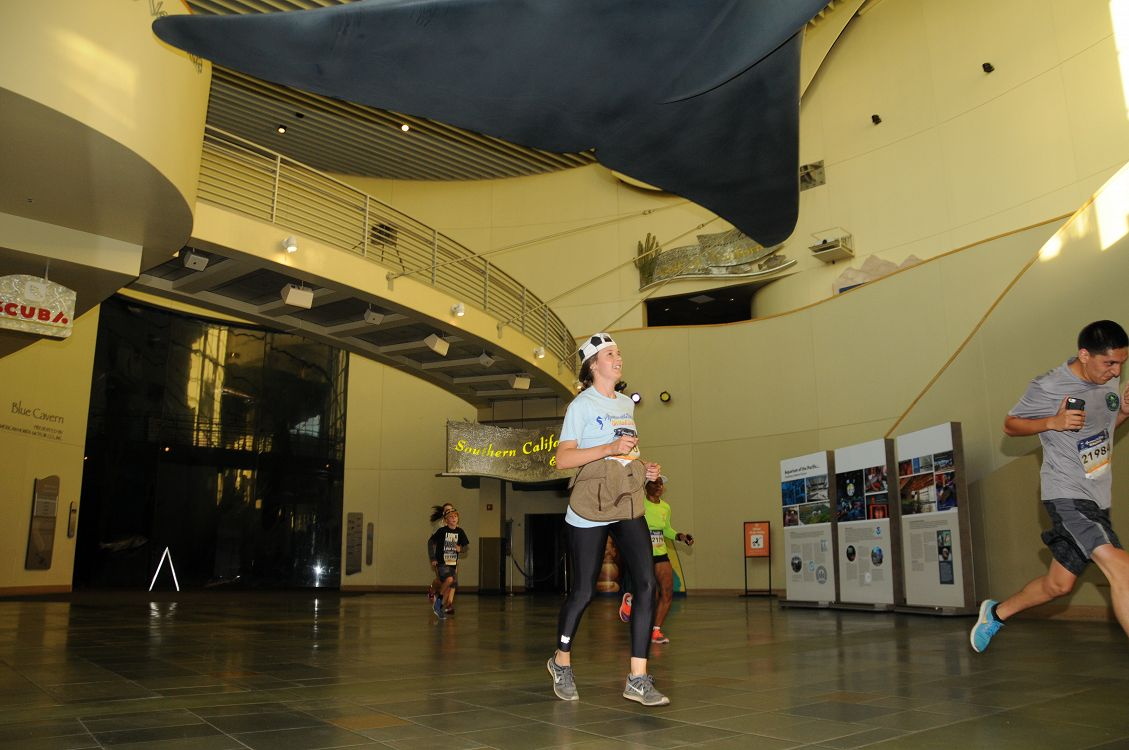 5k runners running through the Aquarium's Great Hall - lightbox