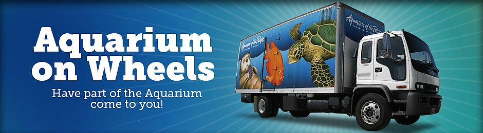Aquarium Education Programs