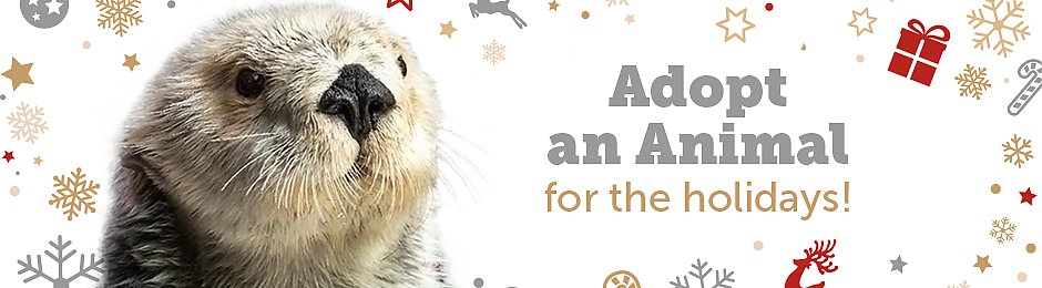 Adopt an animal for the holidays - banner