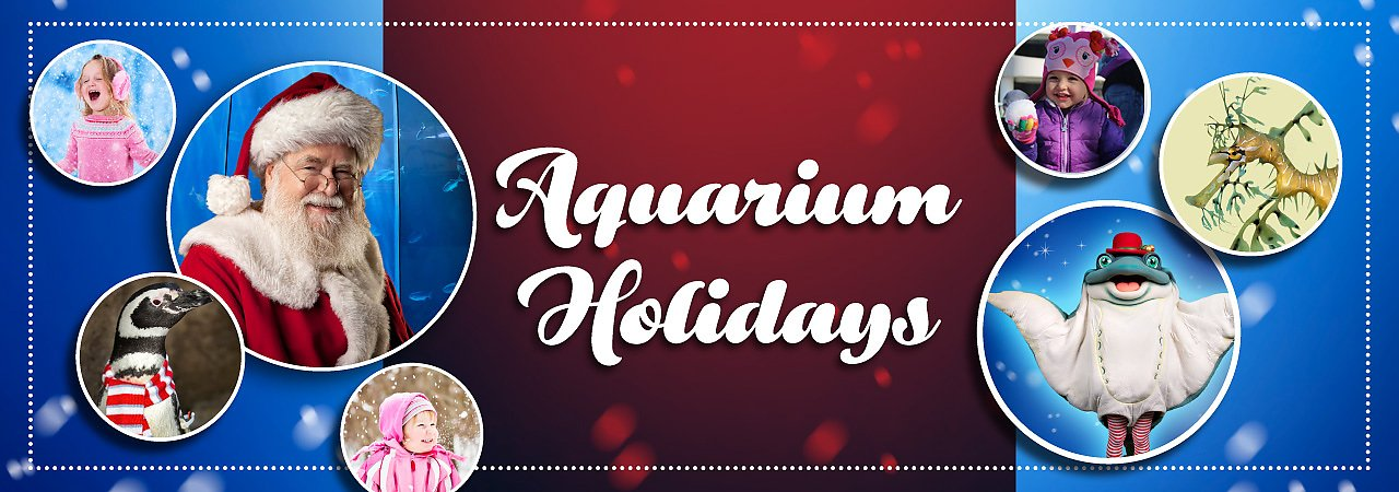 Aquarium Holidays at the Aquarium of the Pacific - banner