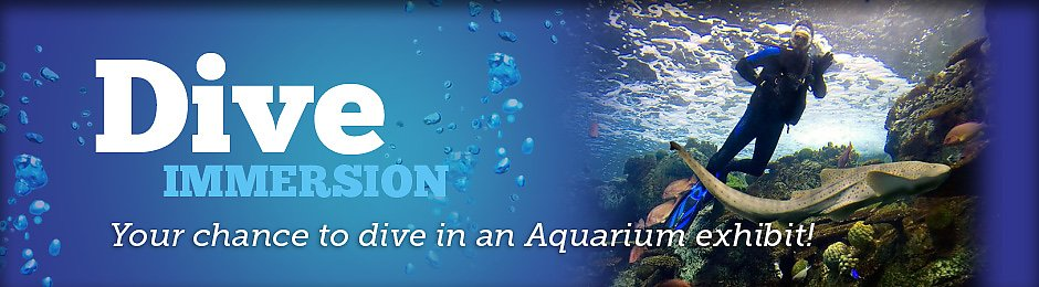 Scuba Dive at the Aquarium - banner