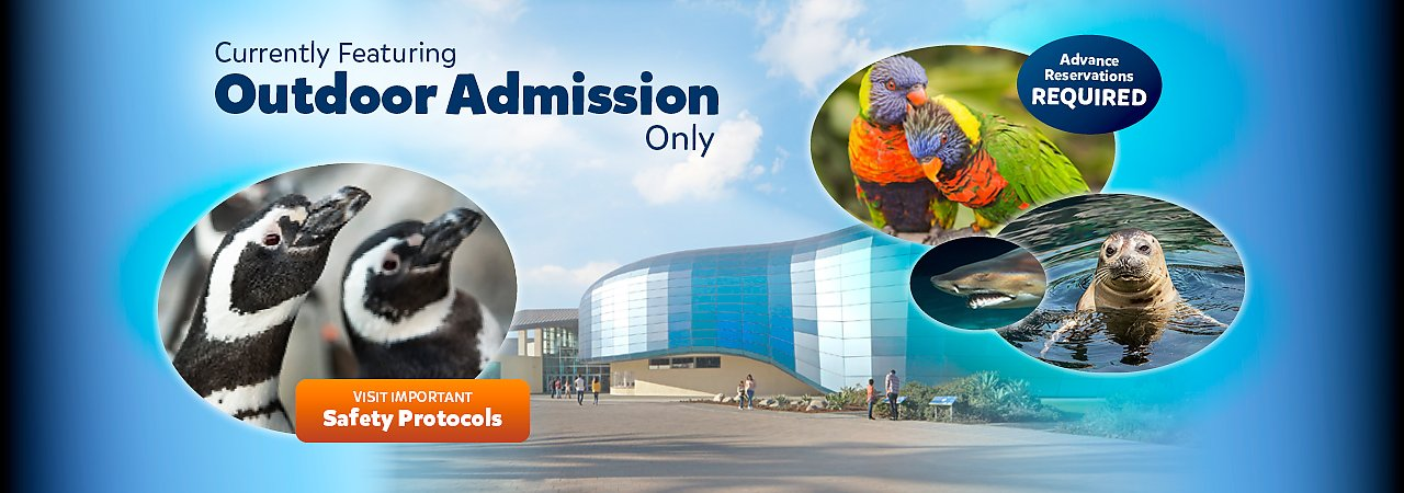 Currently Featuring Outdoor Admission Only Advance Registrations Required - banner