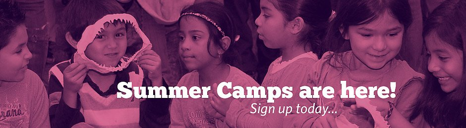 Summer Camps at the Aquarium of the Pacific - banner