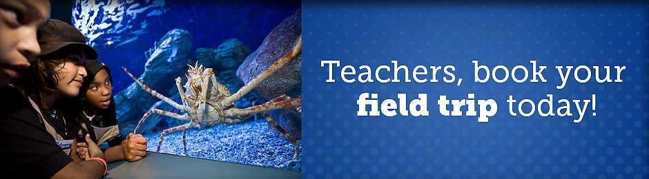 Your Aquarium Field Trip