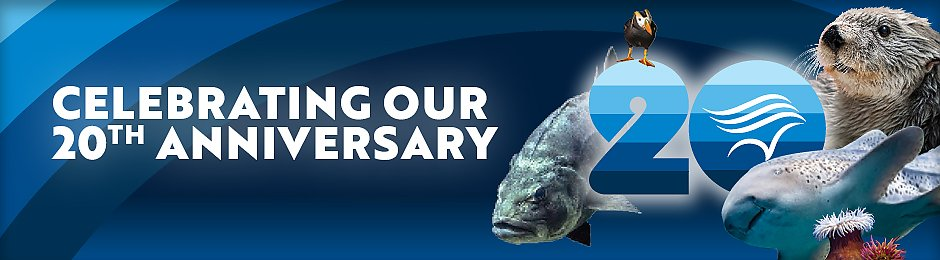 Celebrating The Aquarium's 20th Anniversary - banner