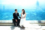 Smiling wedding couple in sea lion tunnel