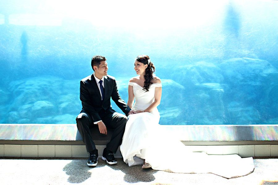 Smiling wedding couple in sea lion tunnel - lightbox