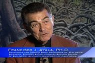 Francisco Ayala: Evolution
