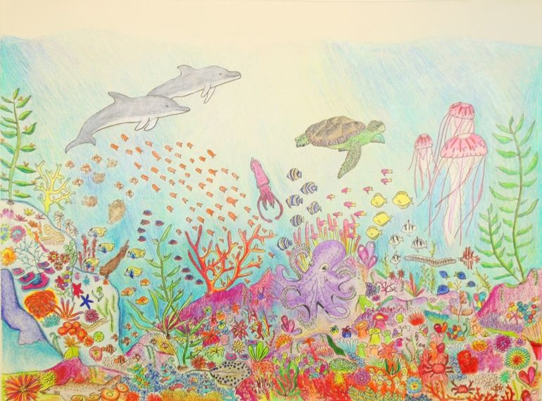 Aquarium Hosts Regional Coastal America Art Contest