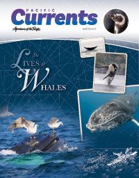CURRENTS_WINTER_17.jpg