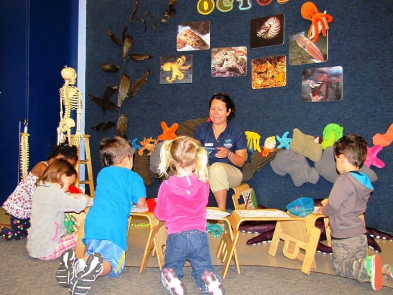 Aquarium Summer Camps Now Open for Registration