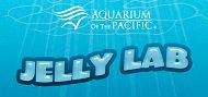 Aquarium Introduces New Jelly Lab App