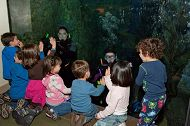 Top 10 Aquarium Happenings in 2014