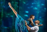 Long Beach Ballet Presents 'Guardians' at the Aquarium for Second Year